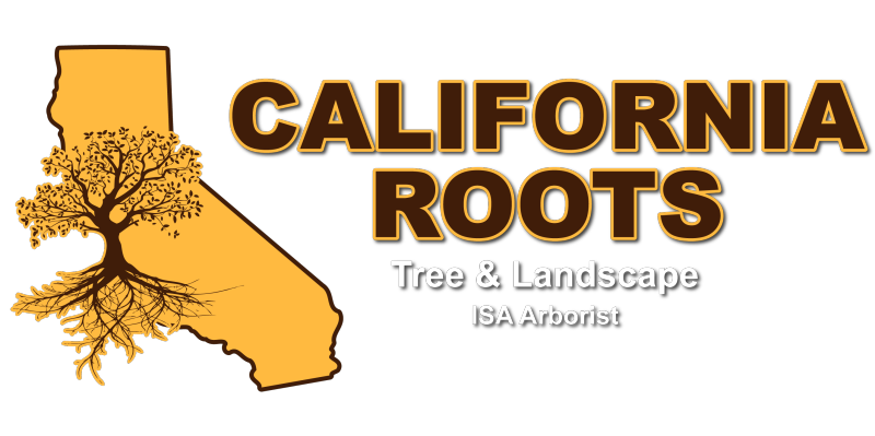 California Roots Tree & Landscape