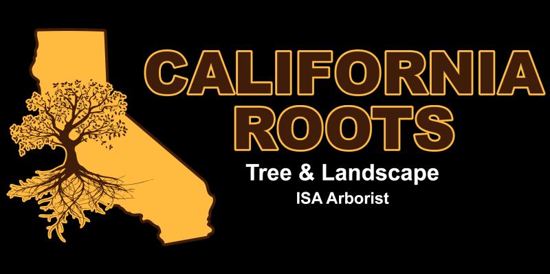 California Roots Tree & Landscape
