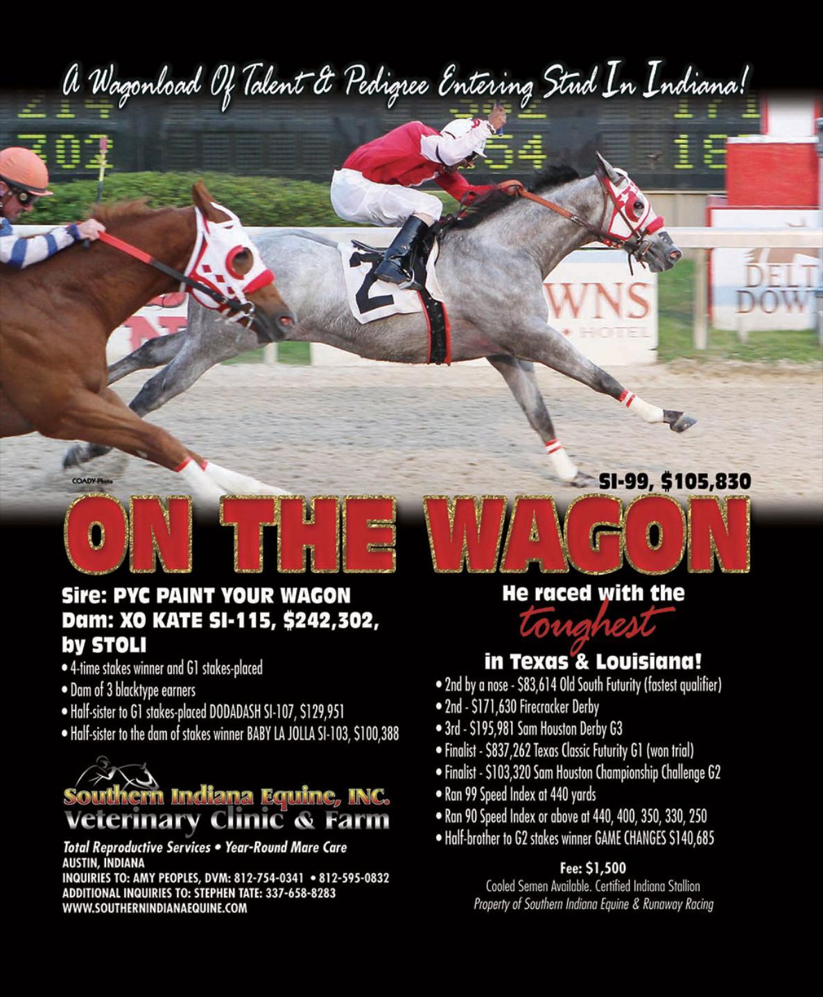 Southern Indiana Equine 2943 N Slab Rd Austin, IN 47102-8509