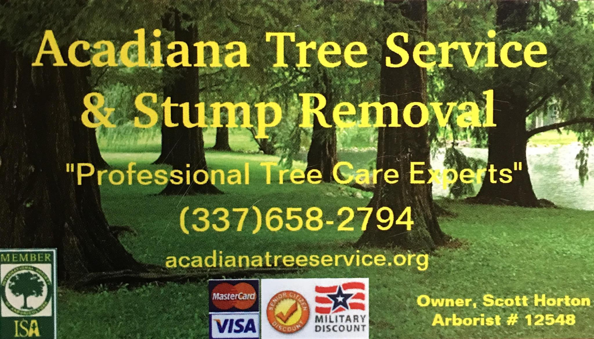 Tree pruning, also known astree trimming, is the selective removal of tree limbs. There are many reasons to prune or trim tree limbs.