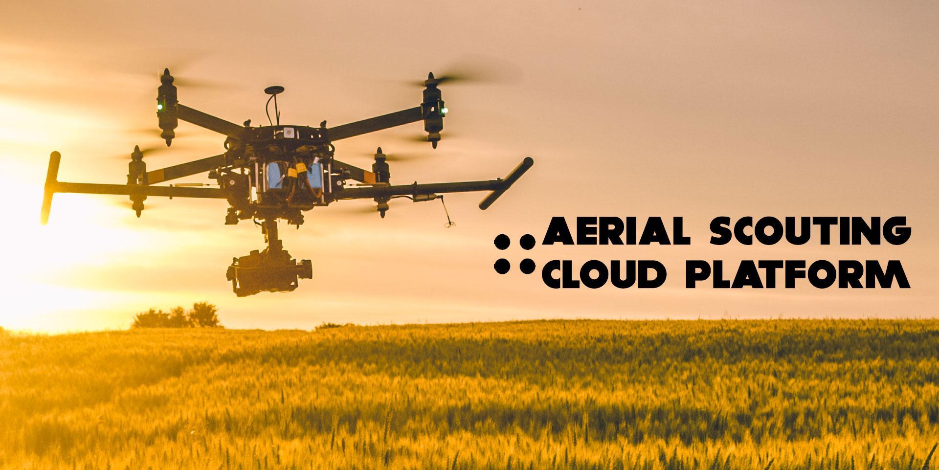 Aerial Scouting Cloud Platform